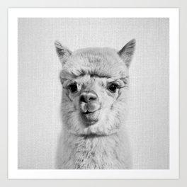 Alpaca - Black & White Art Print