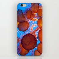 jelly fish iPhone & iPod Skins featuring Jelly Fish by Shannon McCullough-Wight
