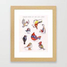 Winter Birds of the East Coast Framed Art Print