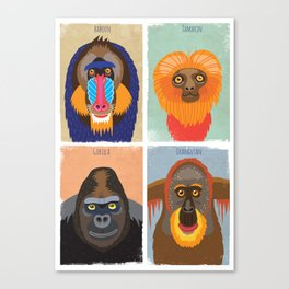 Funky Monkeys Canvas Print