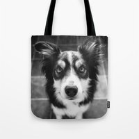 border collie Tote Bags featuring Tri-coloured border collie. by liamgrantfoto