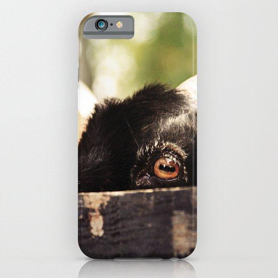 Peek-a-Boo iPhone & iPod Case