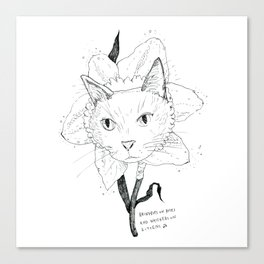 Catffodil Canvas Print