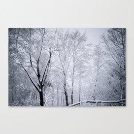 White branches (I) Canvas Print