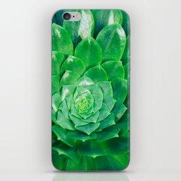 Botanical Gardens - Succulent #686 iPhone Skin