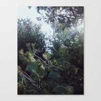 clear Canvas Prints featuring Clear by Nicholas Driver