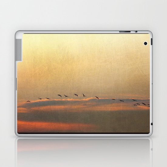 Sunset Flight Laptop & iPad Skin