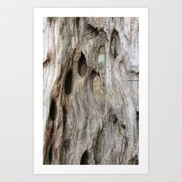 """Swiss"" wood Art Print"