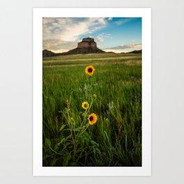 Sunflowers on the Western Prairie - Flowers and Landscape Near Scottsbluff Nebraska Art Print