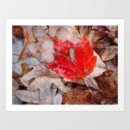 autumnal reverie 657 Art Print