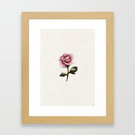 Pink Rose Embroidery Framed Art Print