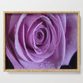 Purple Rose-3 Serving Tray