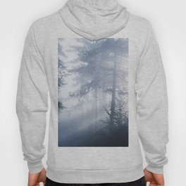 Sun rays shinning through foggy forest Hoody