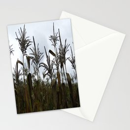 Fall on the Island Stationery Cards