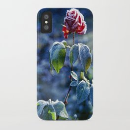 Frosted Rose iPhone Case