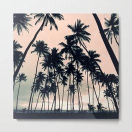 Blush sky & Palms Metal Print