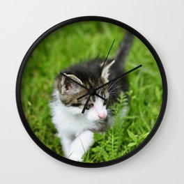 Kitten in the grass Wall Clock