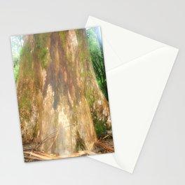 "Mountain Ash Tree (Aka ""The Big Boy"") Stationery Cards"