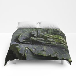 Green Bliss (3rd in Cabbage collection) Comforters