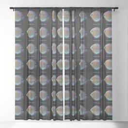 Royal Blue Discus Sheer Curtain
