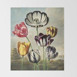Tulips : Temple of Flora of New illustration of the sexual system of Carolus von Linnaeus Throw Blanket