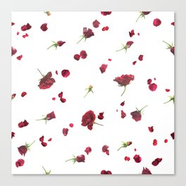 Dark Roses in Time Canvas Print