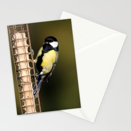 Great tit on feeder Stationery Cards
