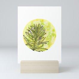 Euphorbia on green and yellow Mini Art Print