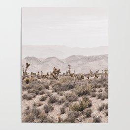 Sierra Nevada Mojave // Desert Landscape Blush Cactus Mountain Range Las Vegas Photography Poster