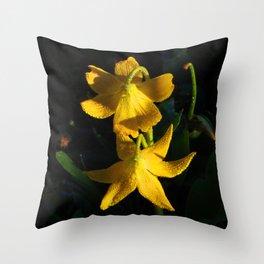 Glacier National Park, Glacier Lilies, Botanical Photography, Floral Print, Yellow Flowers Throw Pillow