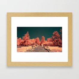 The steps of Joaquin Miller Park Framed Art Print