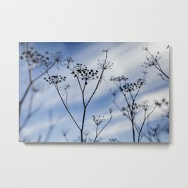 A Lazy Day in the Fall  Metal Print