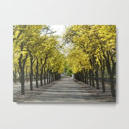 Road to Arrival Metal Print