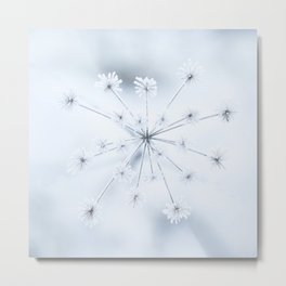 Beautiful Dry Flower with Ice Crystals #decor #buyart #society6 #holiyay Metal Print