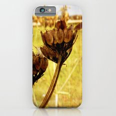 End of summer is near Slim Case iPhone 6s