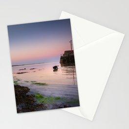 Dog chasing fish in Barna, Ireland Stationery Cards