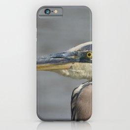 Great Blue Heron Animal / Coastal Wildlife Photograph iPhone Case
