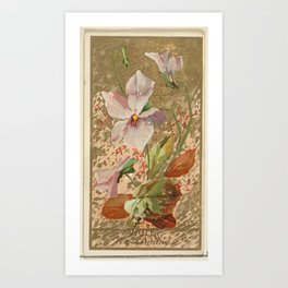 Violet (Viola Canina), from the Flowers series for Old Judge Cigarettes Art Print