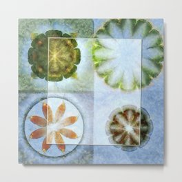 Lignin Spacing Flowers  ID:16165-040505-07411 Metal Print