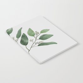 Branch 2 Notebook