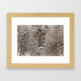 Pericnik Falls Framed Art Print