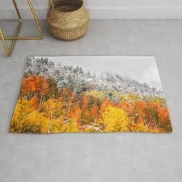 Fall to Winter Rug