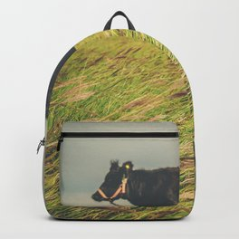 Texas Cow in the Grass Backpack