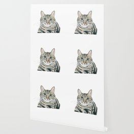 The portrait of the cat Wallpaper