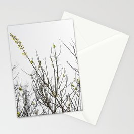 Trees in Black and White Stationery Cards