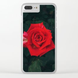 Red rose Clear iPhone Case