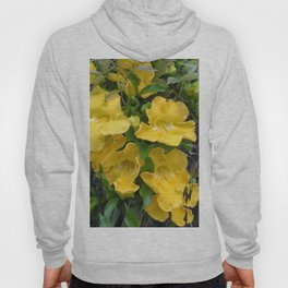 Cat's Claws Vines Hoody