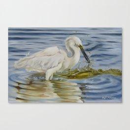 Snowy Egret And A Shrimp Canvas Print