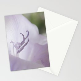 flora . gladiolus ,  gladiola Stationery Cards