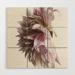 Dahlia Flower #2 Wood Wall Art
